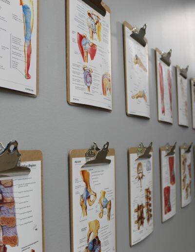 Dauntless + Integrated Chiropractic Rehab Clinic hallway at Edina Commerce Center